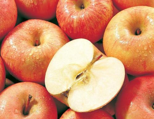 水果行情接连下滑,苹果一斤亏8毛