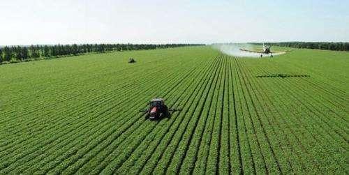 """报告称更快的农业生产率增长是""""关键"""""""