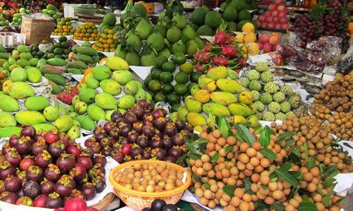 2018-19年度智利水果出口:一些重要变化