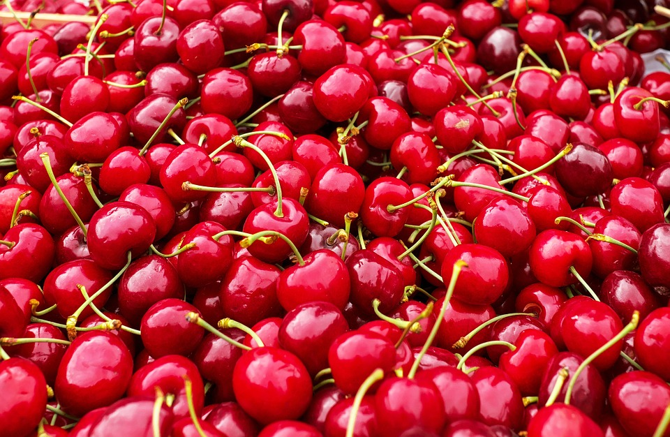 智利水果出口同比增长2.3%,亚洲市场表现抢眼