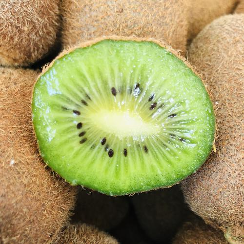 智利猕猴桃出口量预计与去年持平