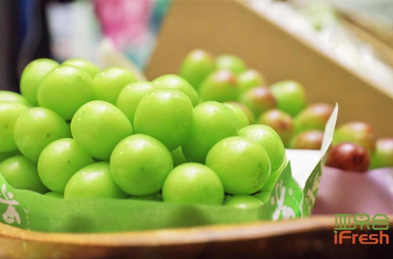 俄罗斯等国联合开发水果残留有毒物质检测法